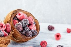 Frozen black and red raspberries in coconut bowl. Frozen black and red raspberries in coconut bowl Royalty Free Stock Image