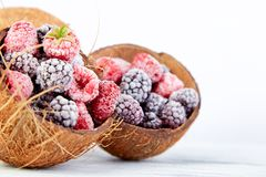 Frozen black and red raspberries in coconut bowl. Frozen black and red raspberries in coconut bowl Royalty Free Stock Images