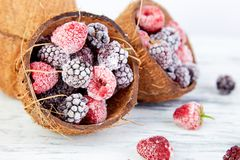 Frozen black and red raspberries in coconut bowl. Frozen black and red raspberries in coconut bowl Stock Image