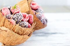 Frozen black and red raspberries in coconut bowl. Frozen black and red raspberries in coconut bowl Stock Images