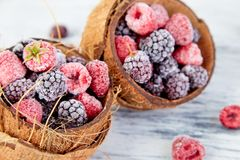 Frozen black and red raspberries in coconut bowl. Frozen black and red raspberries in coconut bowl Royalty Free Stock Photography