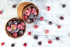 Frozen black and red raspberries in coconut bowl. Top view Royalty Free Stock Image