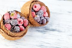 Frozen black and red raspberries in coconut bowl. Top view Royalty Free Stock Images