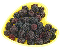 Frozen Blackberries Stock Photo