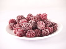 Frozen Blackberries. On a white plate and white background with ice crystals Royalty Free Stock Image