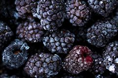 Frozen blackberries as background. Close up. Organic fruit stock photos