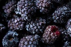 Free Frozen Blackberries As Background. Organic Fruit. Close Up Royalty Free Stock Image - 136179116