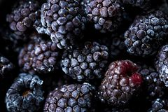Frozen blackberries as background. Organic fruit. Close up royalty free stock image
