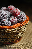 Frozen blackberries in basket Royalty Free Stock Image