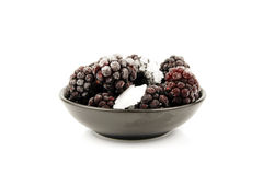 Frozen Blackberries in a Bowl Royalty Free Stock Photos