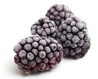 Frozen blackberries close up Stock Photos