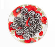 Frozen blackberries Royalty Free Stock Photos
