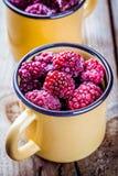 Frozen blackberries in a mugs Stock Photo