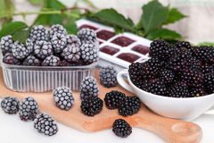Frozen blackberries in a saucer on a wooden board. Frozen blackberries in a saucer on a wooden table Royalty Free Stock Photo