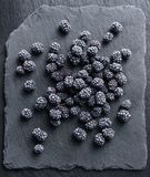 Frozen blackberry on black slate. Top view. High resolution product Royalty Free Stock Image