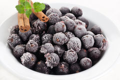 Frozen blackcurrant berry Stock Photos