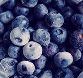 Frozen Blueberries Stock Photo