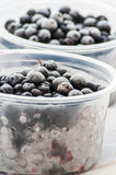 Frozen blueberries Royalty Free Stock Photos