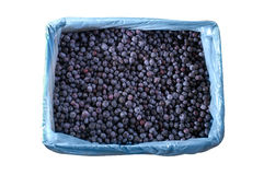 Frozen blueberries in crates texture - background Royalty Free Stock Image