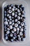 Frozen blueberries Stock Photos