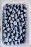 Frozen blueberries Royalty Free Stock Photos
