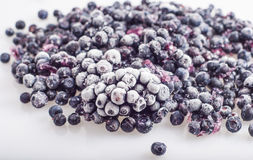 Frozen blueberries royalty free stock photography