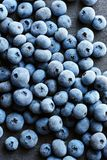 Frozen blueberry on black slate. Close up. Top view. High resolution product Royalty Free Stock Photos