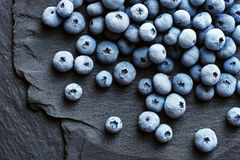Frozen blueberry on black slate. Close up. Top view. High resolution product Royalty Free Stock Photo