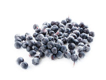 Frozen blueberry Royalty Free Stock Photos