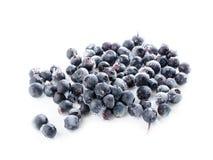 Frozen blueberry Royalty Free Stock Photos
