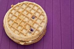Frozen Blueberry Waffles Royalty Free Stock Photo