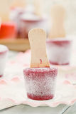 FROZEN BLUEBERRY YOGURT POPS Royalty Free Stock Photos