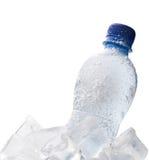 Frozen bottle Stock Image