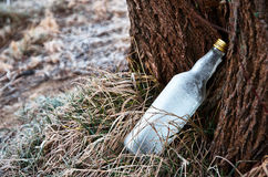Frozen bottle. In the grass under a tree Royalty Free Stock Images