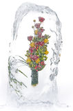 Frozen bouquet of red and yellow roses Royalty Free Stock Photos