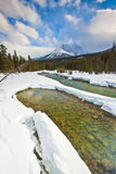 Frozen Bow River of Banff National Park Royalty Free Stock Photo