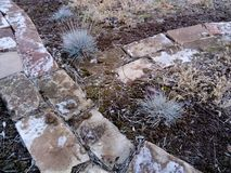 Frozen brick pathway with blue grass royalty free stock photography