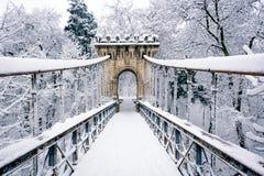 Frozen bridge. In park in winter Royalty Free Stock Photo