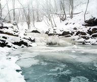 Frozen brook Royalty Free Stock Image