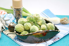 Frozen brussels Royalty Free Stock Images