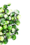 Frozen Brussels sprouts cabbage isolated on white background top Stock Image