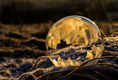 Frozen bubble 2 Stock Photo