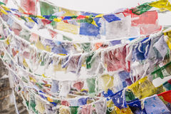 Frozen buddhist flags. Colorful buddhist frozen flags at the top of Thorong La pass,  Annapurna circuit, Himalaya, Nepal Royalty Free Stock Photos