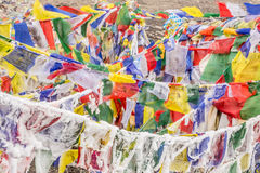 Frozen buddhist flags. Colorful buddhist frozen flags at the top of Thorong La pass,  Annapurna circuit, Himalaya, Nepal Royalty Free Stock Images