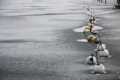 Frozen buoys Stock Photography
