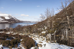 Frozen Burn at Loch Muick in Aberdeenshire. Frozen landscape at Loch Muick in Aberdeenshire in Scotland Royalty Free Stock Image
