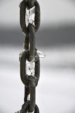 Frozen chain close-up. Photo of some chain rings with ice on them Royalty Free Stock Photo