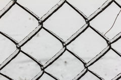 Frozen chain link fence Royalty Free Stock Photography