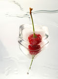 Frozen Cherrie On Glass Surface Stock Photos