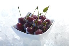 Frozen cherries Stock Image